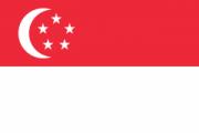 Флаг города Сингапур