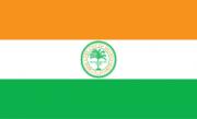 Флаг города Майами