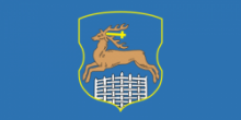 Флаг города Гродно