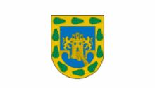 Флаг города Мехико