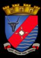 Герб города Анцирабе
