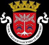 Герб города Дили