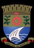 Герб города Туамасина