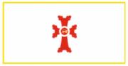 Флаг города Гюмри