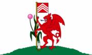 Флаг города Кардифф