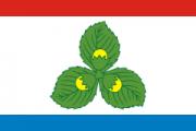 Флаг города Краснознаменск