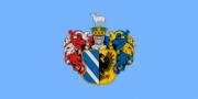 Флаг города Сегед