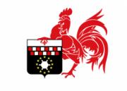 Флаг города Шарлеруа