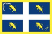Флаг города Турин