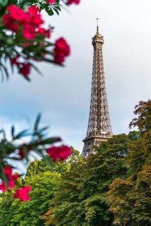 Фото город Париж, Франция (262312933)