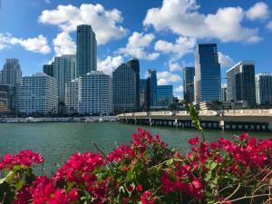 Фото город Майами, США (1727855428)
