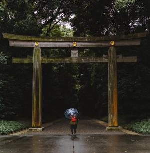 Фото город Токио, Япония (415054753)