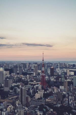 Фото город Токио, Япония (802259761)
