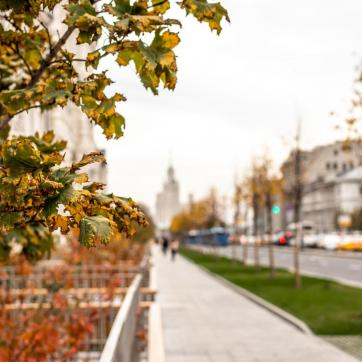 Фото город Москва, Россия (1213876213)