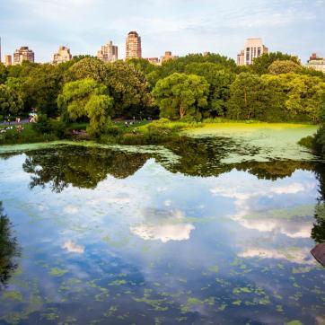 Фото город Нью-Йорк, США (1558201187)