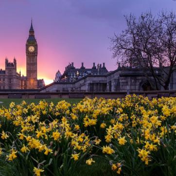 Фото город Лондон, Великобритания (244567770)