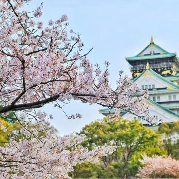 Фото город Осака, Япония (1887239970)