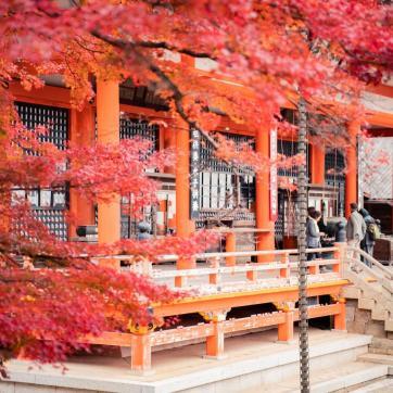 Фото город Осака, Япония (1416441526)