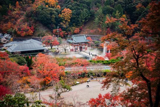 Фото город Осака, Япония (1073466079)