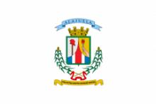 Флаг города Алахуэла