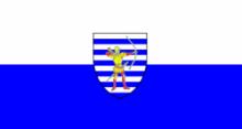 Флаг города Бельцы