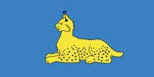 Флаг города Гомель