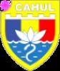 Герб города Кагул
